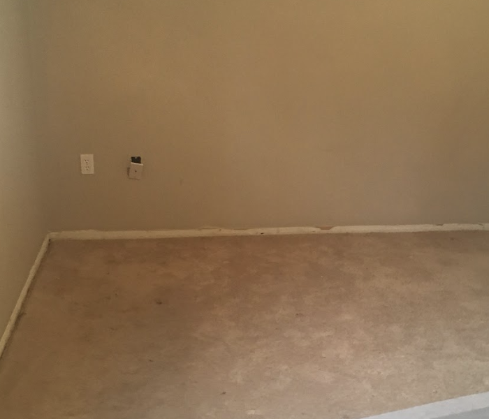 a room with grey walls and carpeting
