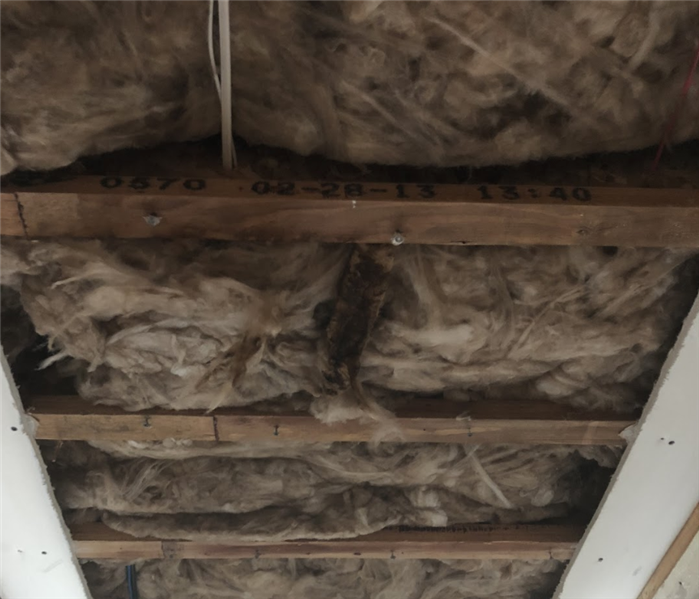 a ceiling with insulation exposed