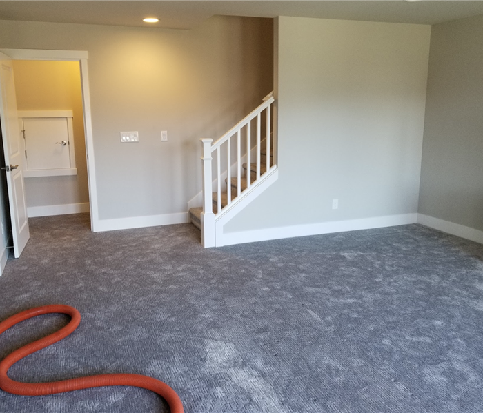 carpeting in a room near a staircase