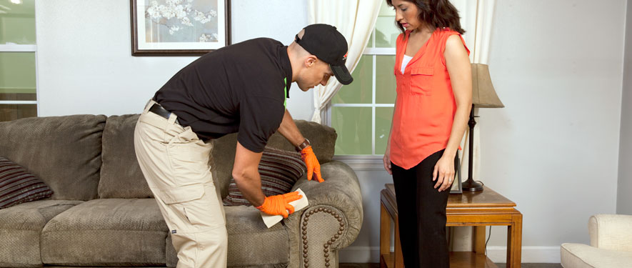 Woodinville, WA carpet upholstery cleaning