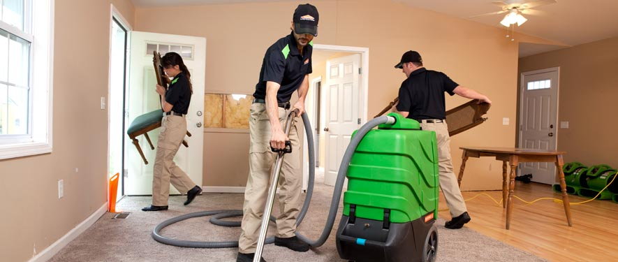 Woodinville, WA cleaning services